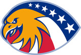 American Eagle Head Stars And Stripes flag