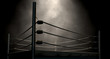 Classic Vintage Boxing Ring - 75778464