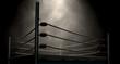 Leinwanddruck Bild - Classic Vintage Boxing Ring