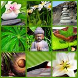 Wellness Collage grün Steine