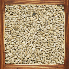 Sunflower seeds, collection of products