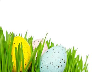 Easter eggs grass copyspace