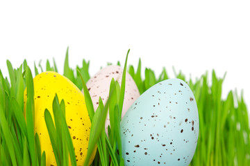 Easter eggs grass isolated
