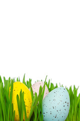 Easter eggs grass copy space