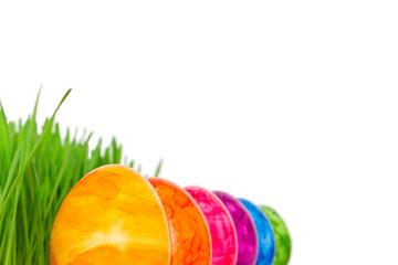 Rainbow Easter Eggs grass copyspace