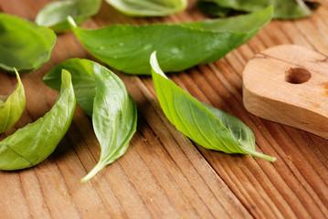 foglie di basilico sul tavolo di legno