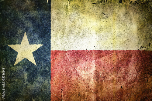 flag of the state of Texas - 75786248