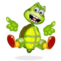 tartaruga cartoon bis