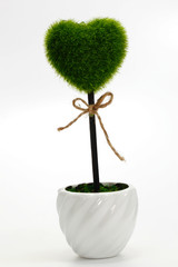 Trees cut a heart shape