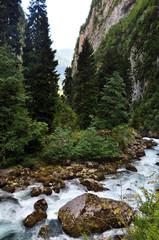 Горный ручей (Кавказ, Абхазия).