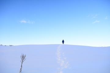 zorlu kış şartlarında kararlı adımlar