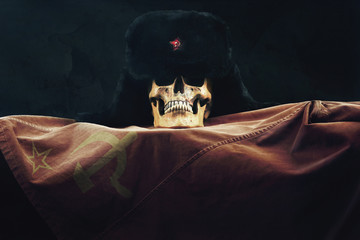 Skull with Russian Flag and old Uschanka