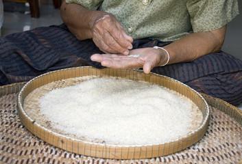 winnow rice