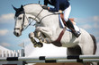 Leinwanddruck Bild - Equestrian