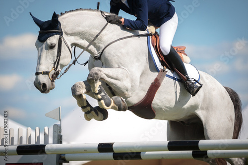 Leinwanddruck Bild Equestrian