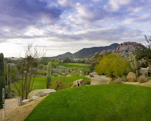 Fotobehang Golf Desert golf course Scottsdale,Az,USA