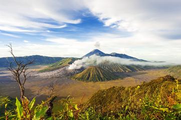 Mount bromo  batok semeru volcano, java indonesia.