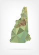Low Poly map of New Hampshire state