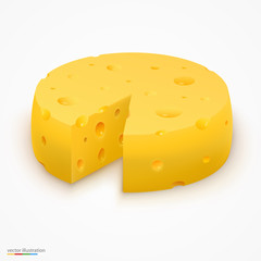 Wheel of cheese. Vector illustration