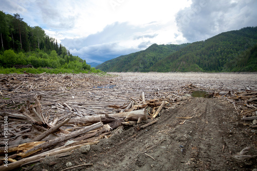 Driftwood near dam of hydro power plant with access road - 75813848