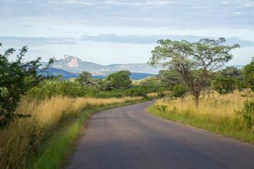 African road in savanna, South Africa, Kruger national park