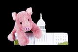 Pork Spending at US Capitol poster