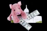 Pork Barrel Spending in Congress poster