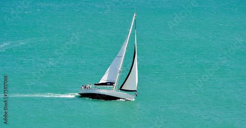 Voilier en action de course sur l'océan - 75817066
