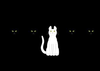 黒猫の中の白猫