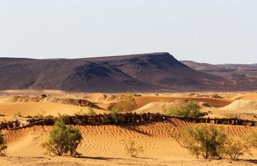 Wüstenlandschaft in Afrika