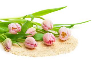 Rosa Tulpen, Deckchen