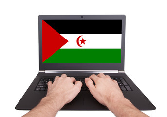 Hands working on laptop, Western Sahara