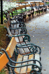 Old benches in a public park in in Vienna, Austria