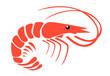 Shrimp - 75838492