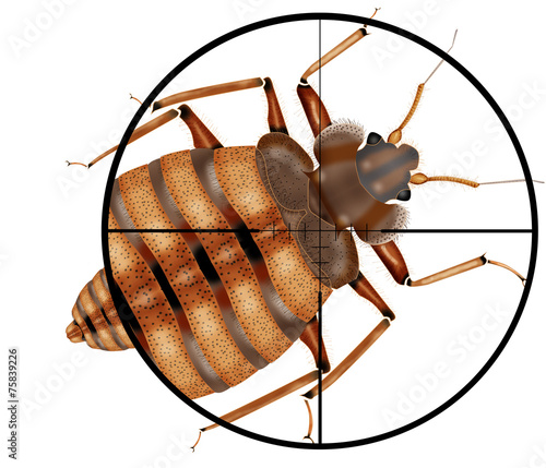 Leinwanddruck Bild kill insects, machine gun, sight, target,