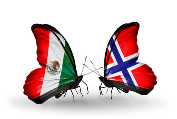 Two butterflies with flags Mexico and  Norway