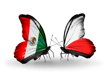 Two butterflies with flags Mexico and Poland