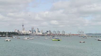 Auckland Skyline & Marina