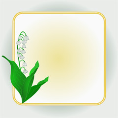 Spring flower Lily of the Valley  background  vector