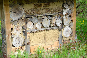 wild bee insect shelter at a meadow