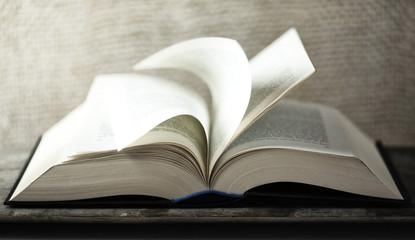 Buch durchblättern