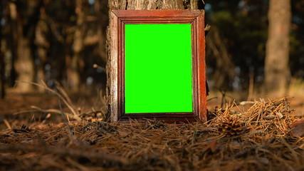 Green screen frame