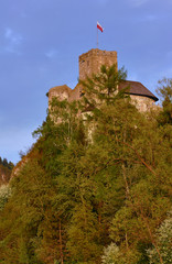Castle on the hill in Carpathian mountains, Poland.