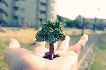手のひらの上に生えている一本の木