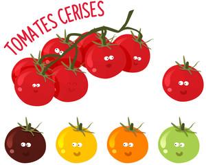 tomates cerises de toutes les couleurs