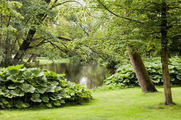 Park in Amsterdam, Niederlande