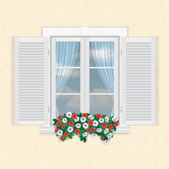 white window with shutters and flowers