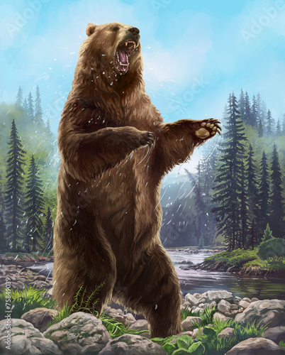 Aggressive Bear - 75849039