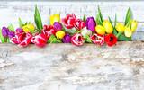 Fototapety spring flower