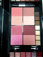 blush shades make up